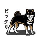びっくり(個別スタンプ:36)