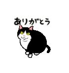 おはぎ(動)(個別スタンプ:04)