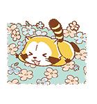 ふんわりラスカル☆ポップアップスタンプ(個別スタンプ:07)