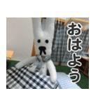 【実写】かわいそくんスタンプ①(個別スタンプ:1)
