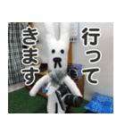 【実写】かわいそくんスタンプ①(個別スタンプ:3)