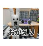 【実写】かわいそくんスタンプ①(個別スタンプ:4)