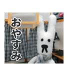【実写】かわいそくんスタンプ①(個別スタンプ:8)
