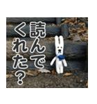 【実写】かわいそくんスタンプ①(個別スタンプ:12)