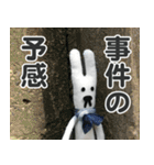 【実写】かわいそくんスタンプ①(個別スタンプ:14)