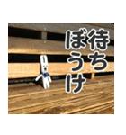 【実写】かわいそくんスタンプ①(個別スタンプ:15)