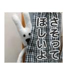 【実写】かわいそくんスタンプ①(個別スタンプ:26)