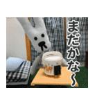 【実写】かわいそくんスタンプ①(個別スタンプ:29)