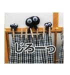 【実写】かわいそくんスタンプ①(個別スタンプ:31)