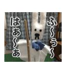 【実写】かわいそくんスタンプ①(個別スタンプ:33)