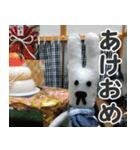 【実写】かわいそくんスタンプ①(個別スタンプ:35)