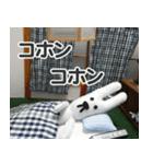 【実写】かわいそくんスタンプ①(個別スタンプ:38)