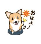 気軽にスタンプ コーギー 冬編(個別スタンプ:01)
