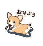 気軽にスタンプ コーギー 冬編(個別スタンプ:02)