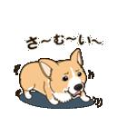 気軽にスタンプ コーギー 冬編(個別スタンプ:03)