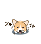 気軽にスタンプ コーギー 冬編(個別スタンプ:04)
