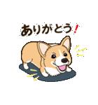 気軽にスタンプ コーギー 冬編(個別スタンプ:13)