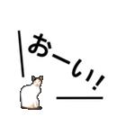 いろんな三毛猫♪.(個別スタンプ:36)