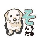 ばな菜のラブラドール仔犬(個別スタンプ:01)