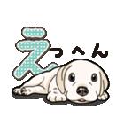 ばな菜のラブラドール仔犬(個別スタンプ:07)
