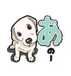 ばな菜のラブラドール仔犬(個別スタンプ:11)