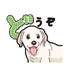 ばな菜のラブラドール仔犬(個別スタンプ:17)