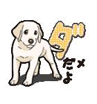 ばな菜のラブラドール仔犬(個別スタンプ:18)