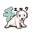 ばな菜のラブラドール仔犬(個別スタンプ:21)
