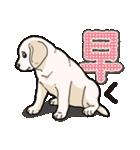 ばな菜のラブラドール仔犬(個別スタンプ:22)