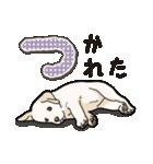 ばな菜のラブラドール仔犬(個別スタンプ:24)
