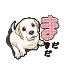 ばな菜のラブラドール仔犬(個別スタンプ:25)