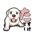 ばな菜のラブラドール仔犬(個別スタンプ:28)