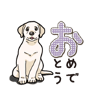 ばな菜のラブラドール仔犬(個別スタンプ:31)