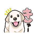 ばな菜のラブラドール仔犬(個別スタンプ:36)