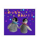 羊毛フェルトペンペンシリーズ クリスマス(個別スタンプ:14)