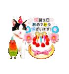 動くねこ!誕生日&毎日言葉&イベント(個別スタンプ:02)