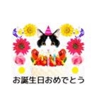 動くねこ!誕生日&毎日言葉&イベント(個別スタンプ:03)
