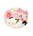 動くねこ!誕生日&毎日言葉&イベント(個別スタンプ:12)