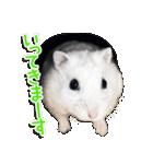 ハムスター☆だいふく ver.1(個別スタンプ:03)