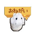 ハムスター☆だいふく ver.1(個別スタンプ:17)