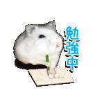 ハムスター☆だいふく ver.1(個別スタンプ:23)