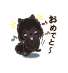 気軽にスタンプ 黒ポメラニアン 誕生日編(個別スタンプ:05)