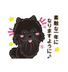 気軽にスタンプ 黒ポメラニアン 誕生日編(個別スタンプ:09)