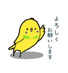 すこぶるインコちゃん【冬とイベント】(個別スタンプ:08)