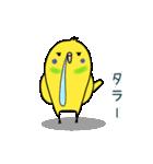 すこぶるインコちゃん【冬とイベント】(個別スタンプ:30)