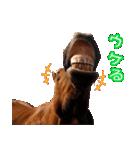大阪弁をしゃべる馬のスタンプ(個別スタンプ:02)