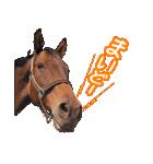 大阪弁をしゃべる馬のスタンプ(個別スタンプ:04)