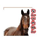 大阪弁をしゃべる馬のスタンプ(個別スタンプ:08)