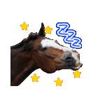 大阪弁をしゃべる馬のスタンプ(個別スタンプ:09)