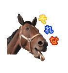 大阪弁をしゃべる馬のスタンプ(個別スタンプ:13)